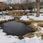Pond in the winter