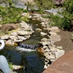 Erney Landscaping rock waterfall running into large pond and large bird in front